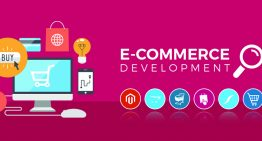 Using Ecommerce Web Development to begin a web-based Store